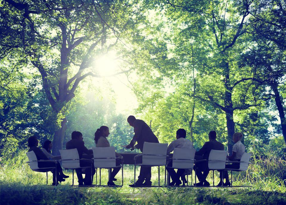Экологический корпоративный тимбилдинг